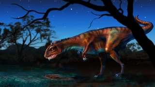 Китайские рабочие нашли останки огромного древнего ящера