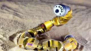 """Роботы-змеи и дрон """"Астропчела"""" будут помогать на МКС"""