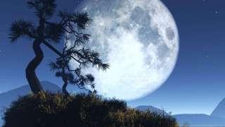 Занимательная лекция о Луне