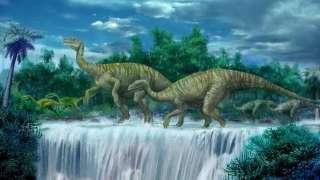 Ученые нашли образцы белка, которым более 200 миллионов лет