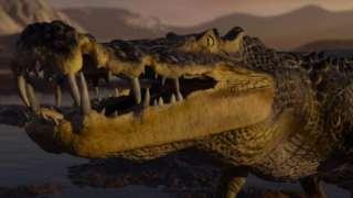 В Китае обнаружены останки древних рептилий