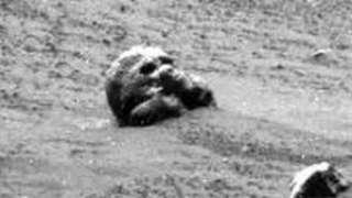 На Луне был обнаружен уникальный объект, похожий на голову животного
