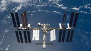 Найдены способные выжить в космосе споры земных бактерий