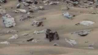На Марсе уфологи обнаружили гигантского краба