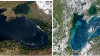 Чёрное море уже не такое чёрное