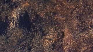 Россия продолжит участие в совместном с европейцами исследовании Марса
