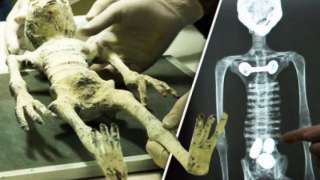 В одной из мумий Наска найдены яйца. Ученые сомневаются в подлинности находки