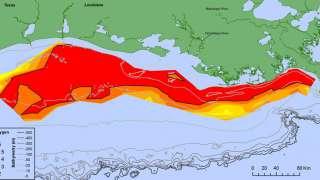 """У берегов США обнаружили гигантскую """"мертвую зону"""""""