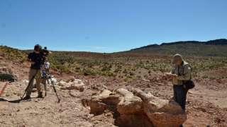 """Палеонтологи откопали в Аргентине динозавра размером с """"Боинг-737"""""""