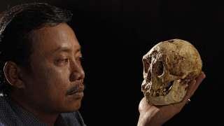 Палеонтологи узнали, когда люди могли впервые встретиться с хоббитами