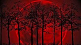 Над США неожиданно взошла Кровавая Луна