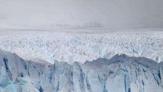 В ледяных пещерах Антарктиды могут таиться неизвестные науке существа