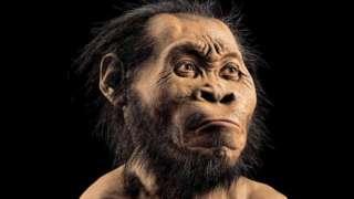 Люди появились примерно 300 тысяч лет назад