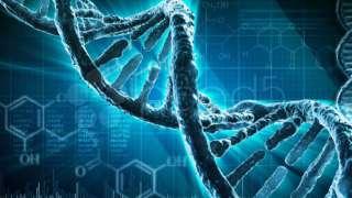 В NASA хотят внедрить редактуру ДНК астронавтов