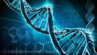 """Исследователи """"NASA» обнаружили влияние космоса на строение ДНК"""