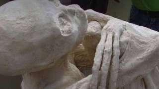 Мумии инопланетян из Перу настоящие