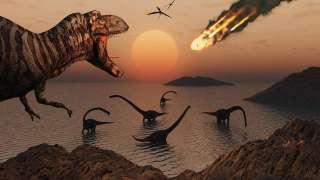Динозавры вымерли по ошибке