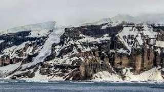 Леса Антарктиды выросли задолго до первых динозавров 260 млн лет назад