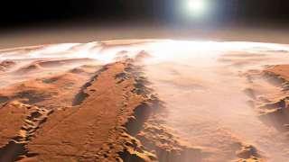 Ученые выяснили, что произойдет с собаками в условиях Марса