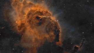 Индийские учёные предрекли человечеству гибель от космического вируса