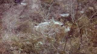 """В Сети появился снимок """"летающей тарелки"""", упавшей в 1980 году"""