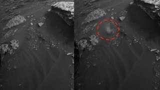 Уфолог обнаружил на поверхности Марса живое существо, похожее на ящерицу