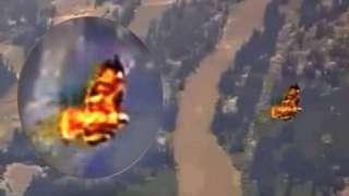 """В США """"огненные птицы"""" попали на камеру возле закрытого парка"""