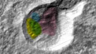 На поверхности Марса обнаружены портреты инопланетян
