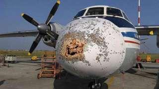 Российский авиалайнер получил загадочное повреждение во время полёта и едва не разбился