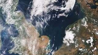 ESA показало, как повышенная солнечная активность уничтожает растительность