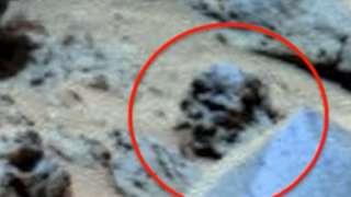 Уфолог Скотт Уоринг нашёл на Марсе череп гуманоида