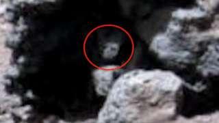 На снимках Марса обнаружена зловещая рептилия