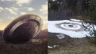 Аргентинец обнародовал веские доказательства того, что пришельцы были в лесу, и удивил интернет