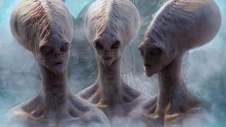 Новозеландец поведал миру шокирующую историю о встрече с инопланетянами