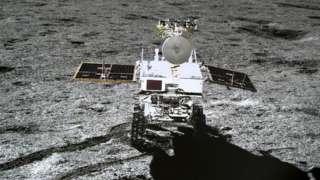 Первое в истории растение на Луне не смогло пережить суровую ночь