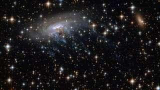 Необычную галактику в форме медузы NASA будет исследовать при помощи новейшего телескопа James Webb