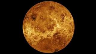 Новосибирские ученые сообщили, что, возможно, обнаружили на Венере живых существ