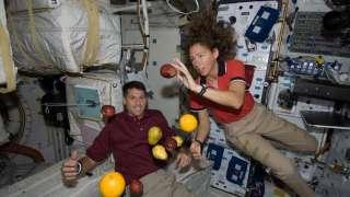 Красноярские ученые раскритиковали предложенную NASA космическую диету