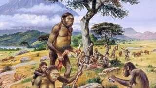 Взрыв сверхновой привёл человечество к прямохождению, ускорив процесс эволюции