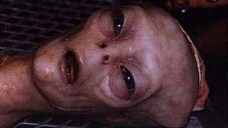 В челябинском огороде нашли реального пришельца? Удивительные фотографии появились в сети