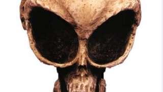 Как это понимать? В Хорватии нашли останки трёх настоящих пришельцев