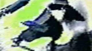 С космоса удалось заснять, как НЛО взлетает в Антарктиде