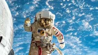 В России появятся четыре новых космонавта
