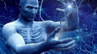 В дальний космос будут летать устойчивые к радиации генно-модифицированные люди