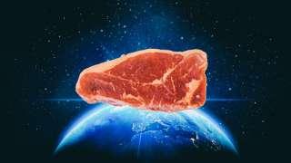 При помощи 3D-принтера впервые удалось искусственно создать мясо в космосе