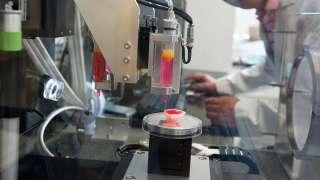 На МКС с помощью биопринтера напечатают кости