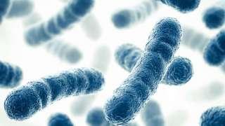 Бактерии обеспечат колонизаторов кислородом и энергией