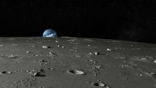 Российские ученые хотят отправить на Луну микроорганизмы