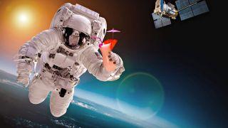 Первый туристический экипаж от Axiom Space к МКС сформирован
