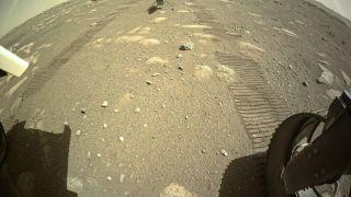 Марсианский вертолет Ingenuity готовится к взлету